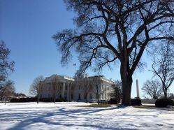 White House and Washington Monument
